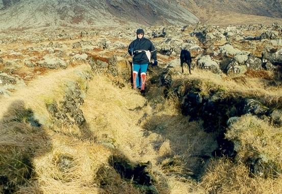 Fjárhús í Stakkavík