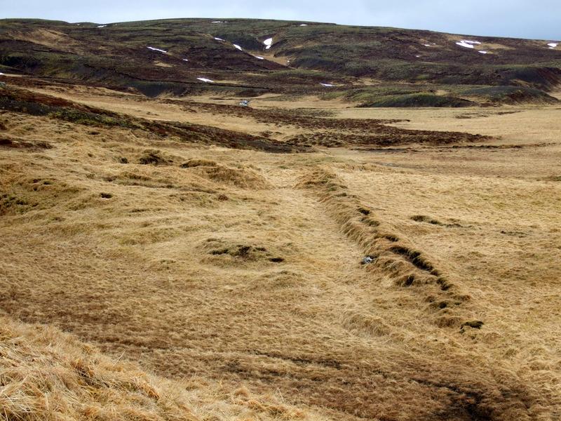 Garður við Selkot