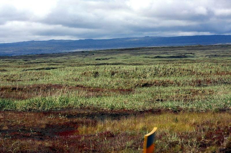 Þorlakshofn-sandgraedslan-2