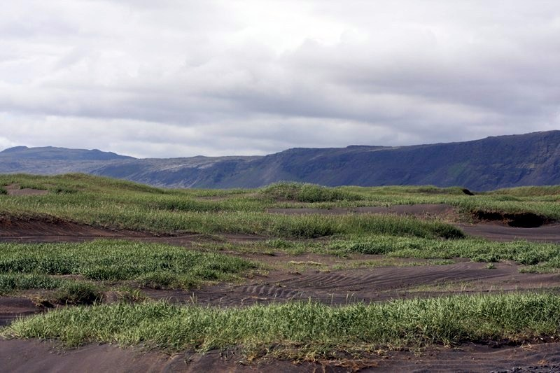 Þorlakshofn-sandgraedslan-4