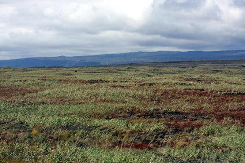 Þorlakshofn-sandgraedslan-1