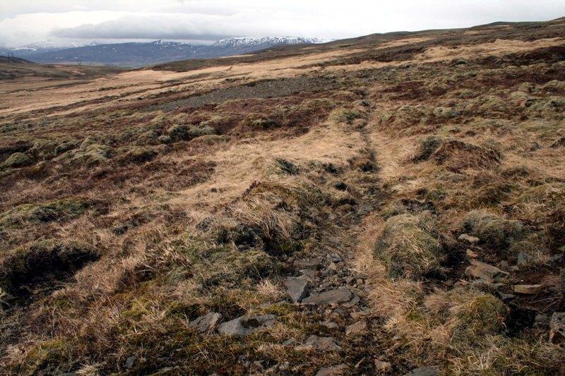 Svínaskarðsvegur