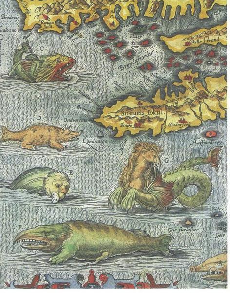 Furðudýr á Faxaflóa - kort Orteliusar 1570