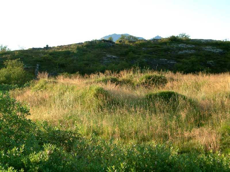 Rústir á Þórhallastöðum