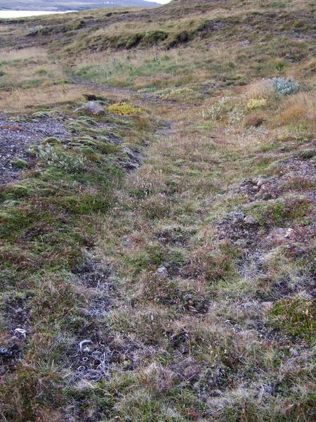 Gamla þjóðleiðin ofan Búrfells(kots)