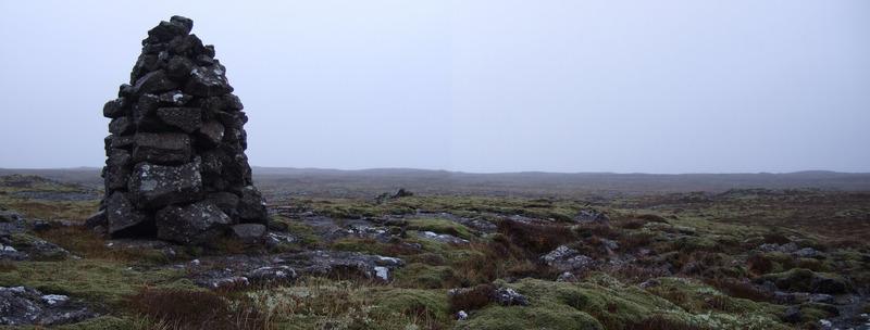 Þyrluvarðan