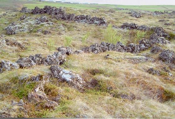 Garðar við Urriðakot