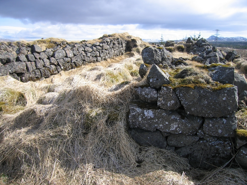 Miðrýmið í fjárhústóftinni