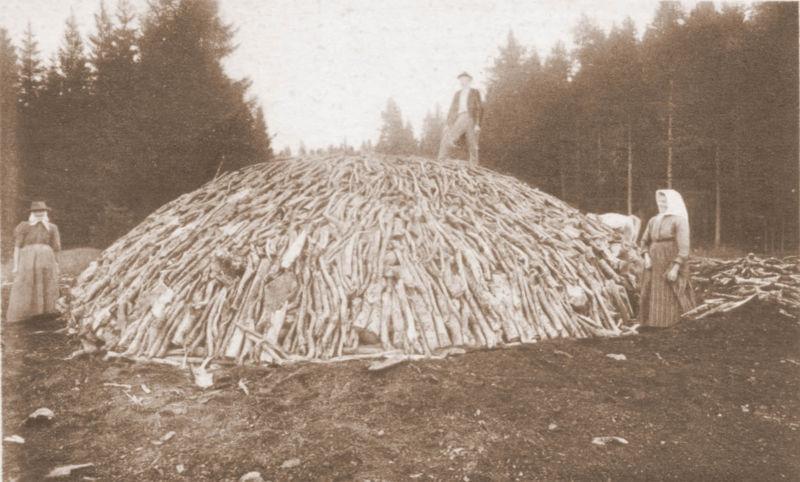Viðarkolagerð 1870 - W-pedia